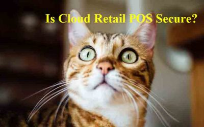 What is Cloud POS & How it Works Plus Other Questions